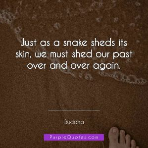 Buddha Quote - Just as a snake sheds its skin, we must shed our past over and over again. - PurpleQuotes.com.