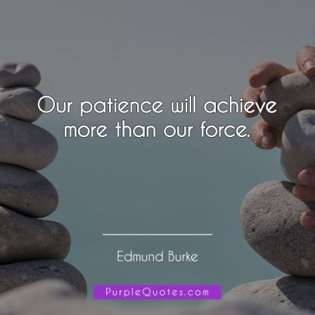 Edmund Burke Quote - Our patience will achieve more than our force - PurpleQuotes.com.