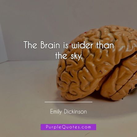 Emily Dickinson Quote - The Brain is wider than the sky. - PurpleQuotes.com.