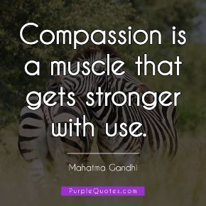 Mahatma Gandhi Quote - Compassion is a muscle that gets stronger with use. - PurpleQuotes.com.