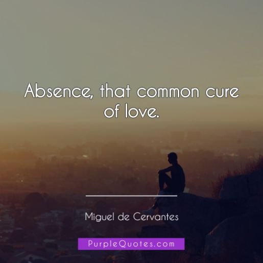 Miguel de Cervantes Quote - Absence, that common cure of love. - PurpleQuotes.com.